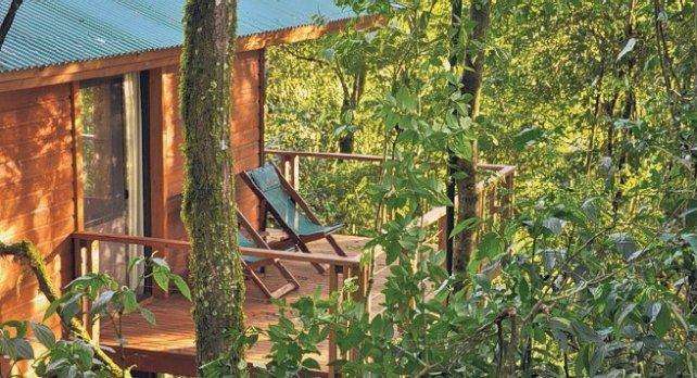 Don Moconá Virgin Lodge. Todo el confort en medio de la Reserva Yabotí.
