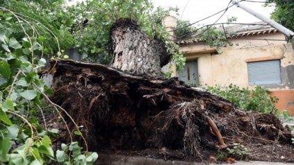 Defensa Civil lleva adelante trabajos tendientes a resolver los problemas que ocasionó la tormenta.